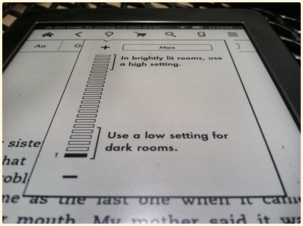 The backlight is the real selling point of the Kindle Paperwhite.